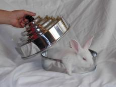 imagen de Cazuela de conejo doble carga